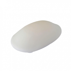 LED Shell 2 in One Mood Light